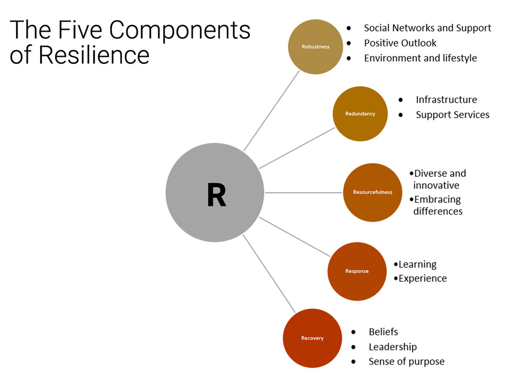 The five components of resilience