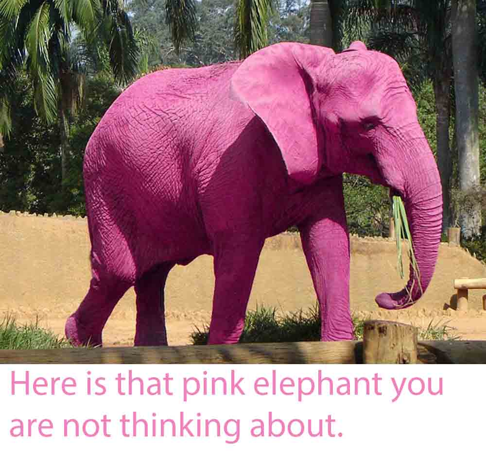 Image of the Pink Elephant you were trying not to think about