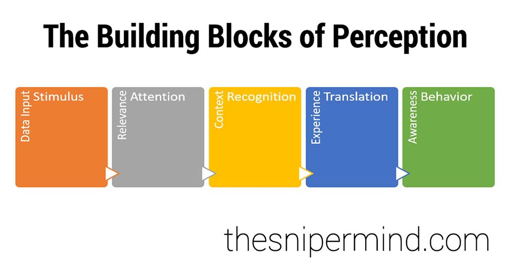 The building blocks of perception