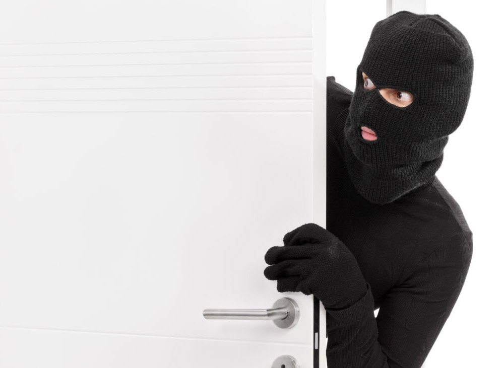 Burglars exhibit a state of Flow and good decision-making