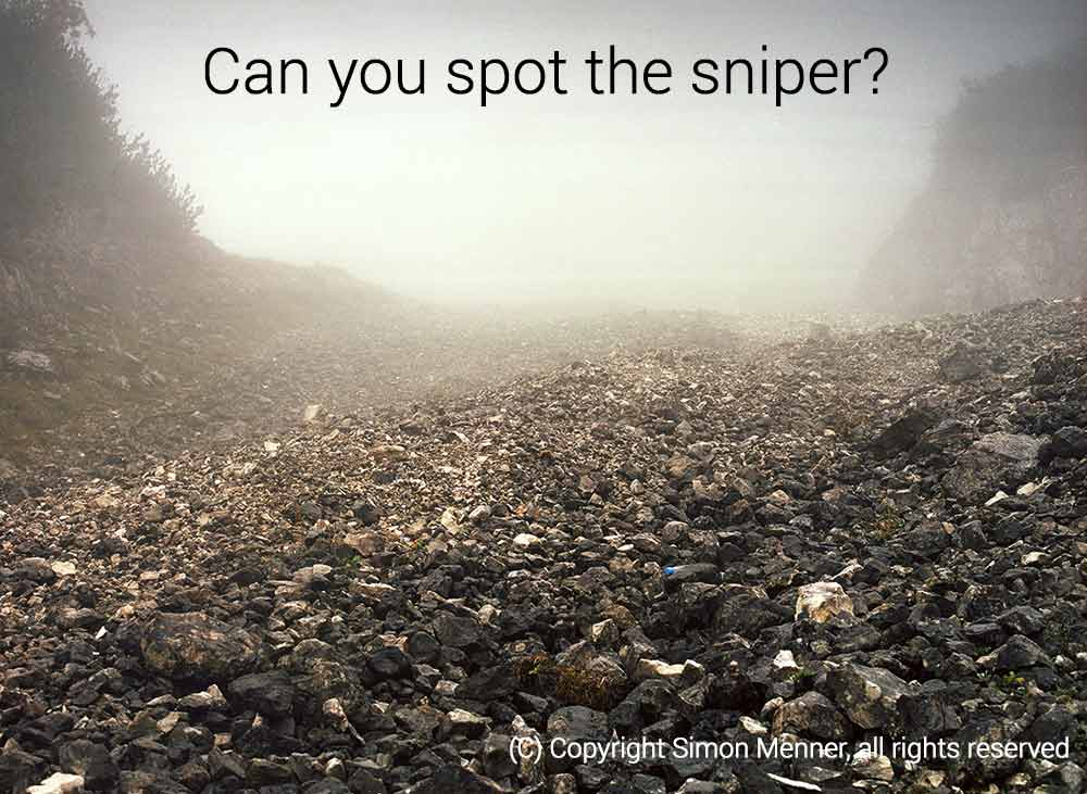 Can you spot the sniper hiding in this image?