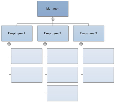 The hierarchical organization chart represents a flawed vision of the organization's structure